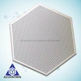 De forme hexagonale du panneau de toiture solide en aluminium résistant à personnaliser le design