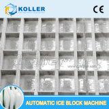 Koller 10 Eis-Block-Maschine der Tonnen-/Tag Dk100 automatische direkte abkühlende für Fischerei