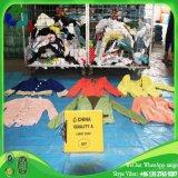 판매를 위한 아름다움 다채로운 초침 숙녀 형식 재킷에 의하여 사용되는 옷