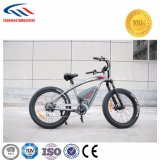 Electric Vehicle High power E-Bike