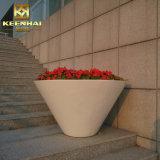 Im FreienEdelstahl-Blumen-Potenziometer-Garten-Pflanzer