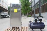 машина озона 50g для стерилизации воды плавательного бассеина