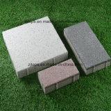 Lastricatori permeabili all'acqua Acqua-Assorbenti del mattone concreto per la strada /Street della Comunità