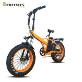 E-Bicicleta gorda da prova da água do motor do pneu 48V 500W