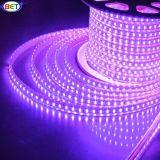 Indicatore luminoso viola flessibile della striscia LED del PVC SMD5050 SMD della striscia del LED