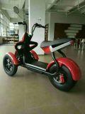 Harley 스쿠터를 가진 1500W 전기 세발자전거