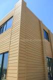 Полые WPC настенной панели с помощью шлифовальной поверхности деревянной PE планка