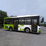 35-50 шина города пассажира емкости мест ЯРКАЯ