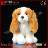 En71 de Realistische Pluche Gevulde Dierlijke Zachte Koning Charles Spaniel Dog van het Stuk speelgoed