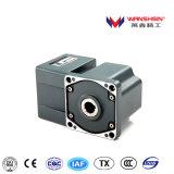 Motor de inducción de la CA/motor del engranaje con la caja de engranajes hueco de ángulo recto