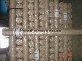 Soldar la malla de alambre galvanizado Electro 3315