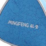Vernice d'argento semplice e contenitore di monili diSpostamento blu