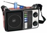 FM/Am/Sw1-2 de Draagbare Radio van 4 Banden met het Spectrum van de Spreker USB/SD/Rechargeable/Bluetooth/van het Scherm