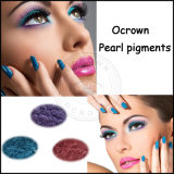 Fosco natural olho nu Eyeshadow Sombra Espelho pigmento cintilante