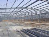 SGS 가벼운 강철 구조물 프로젝트 Wareshouse 작업장