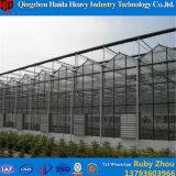 Hydroponic Serre van het Glas van het Systeem voor Tomaat