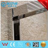2引き戸のThrikenのステンレス鋼フレームのシャワーのドア(BL-B0087-P)