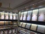 parete Pinky di colore di 600X600mm & mattonelle lustrate porcellana del pavimento