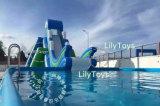 De commerciële Opblaasbare Speelplaats van het Water voor Verkoop/het Volwassen Opblaasbare Park van het Thema van het Water