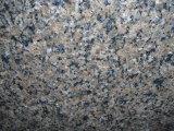 Tropic Azulejos polido de granito marrom&Brames&Bancada