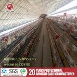 Super qualité H type Cage de poulet avec système de ventilation