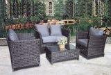 Muebles al aire libre del jardín del sofá de la rota de los muebles (TG-JW43)