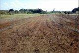 샘을%s 1100W 태양 에너지 수도 펌프, 태양 승압기 수도 펌프 및 농장에 48V 500W