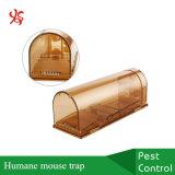 Plástico nenhuma armadilha viva humana do rato do canto do controle de roedor dos ratos do prendedor da prancha da matança