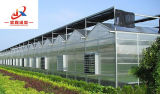 Венло тип поликарбоната выбросов парниковых газов в современном сельском хозяйстве высевающего аппарата
