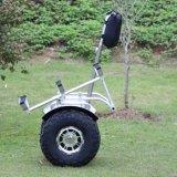 Mehrfache Art-super schwere Eingabe 150kg, die nicht für den Straßenverkehr elektrischen Roller faltet