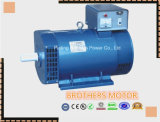 St/Stc Serien-einphasiges u. Dreiphasenwechselstrom-synchroner Generator