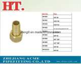 Encaixe hidráulico do conetor do encaixe de mangueira do adaptador de bronze da farpa (identificação x O.D)