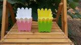 다채로운 화분 담 (BR-HP-023)