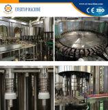 Bouteille d'eau minérale potable plafonnement de la machine de remplissage de rinçage