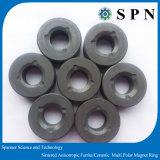 Magnete permanente di /Ceramic del magnete del motore del ferrito