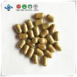 Produto de alta qualidade e melhor de Kianpi Pil do Ginseng do efeito
