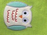 緑のBSの熱湯びんのためのフクロウによって編まれるカバー