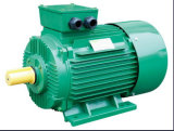 Ye3 Series WS Electric Motor Cast Iron 4p 75kw