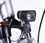 Superdurchaus 700cc elektrische Batterie des Fahrrad-36V 10.4ah SANYO