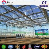 Модульные здания зеленого цвета для стальных структуры пролить