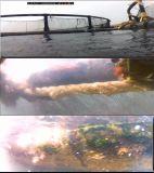 6-Axial autonomes industrielles Rov (Unterwasserdrohne), Unterwasserroboter