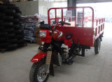 판매 /Double 충격 Absoption 3 Wheele를 위한 가솔린 화물 세발자전거