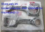 Tige de liaison S00010481/ S00010481+02 pour moteur diesel de Shanghai C6121