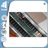 with This Commercial Certificate Escalator off Speed 0.5m/S Step Width 800mm