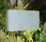 Luz hidropónica do trabalho do diodo emissor de luz da venda 2017 quente para a planta