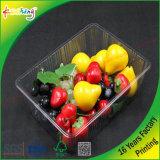 Fábrica mayor de la cubierta de plástico transparente de PVC Caja de plástico para frutas verduras carne