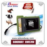 Ultrasuono veterinario tenuto in mano portatile del rifornimento medico