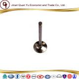 De Klep van de Inham van het Deel van de Dieselmotor van China van Weichai Vg1560051001