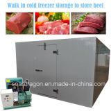 Low Temperature Walk in Cold Freezer Storage to Store Beef