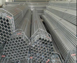 DIP 48.3mm горячий гальванизированный вокруг пробки стали стальная труба/Pre-Gal